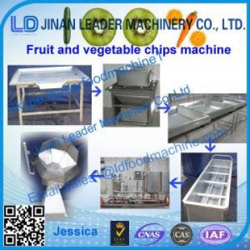 Cucumber Chips processing machinery